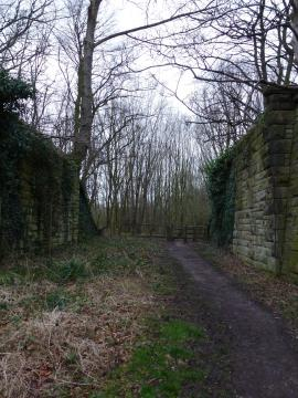 The old path from Middleforth to the Well through the railway cutting